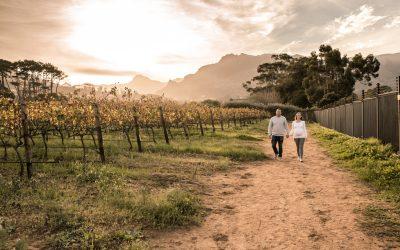 Amy's Maternity Session | Constantia vineyards, Constantia Valley, Cape Town
